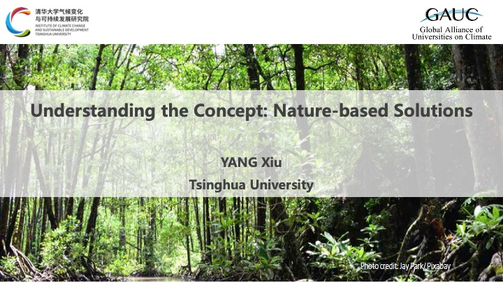 Evaluation and pathways for nature-based climate solutions